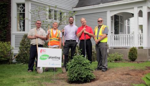 Tree Planting Program - North Bay Hydro