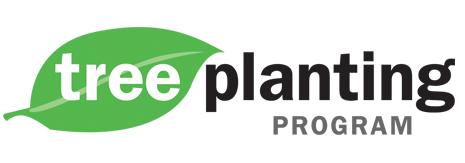 tree-planting-program
